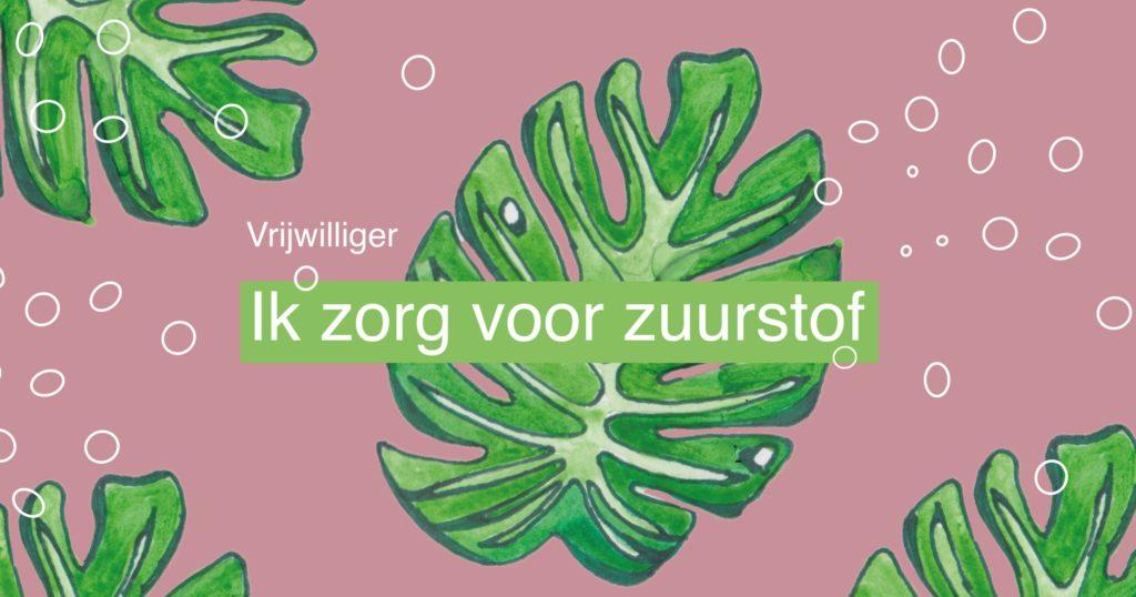 Quote van www.vrijwilligerswerk.be