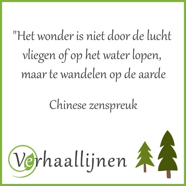 Chinese zenspreuk over het wonder van andelen